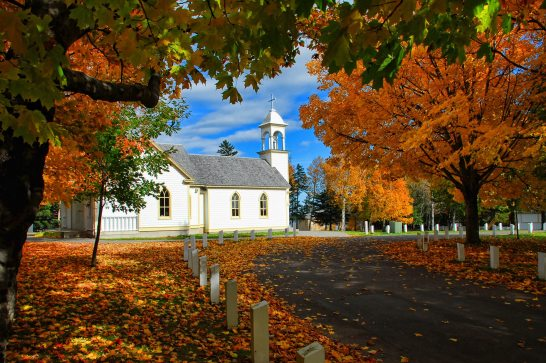 autumn-autumn-leaves-church-460405.jpg